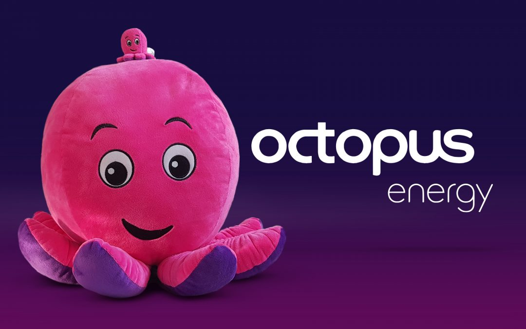 CATCHING UP WITH OCTOPUS ENERGY